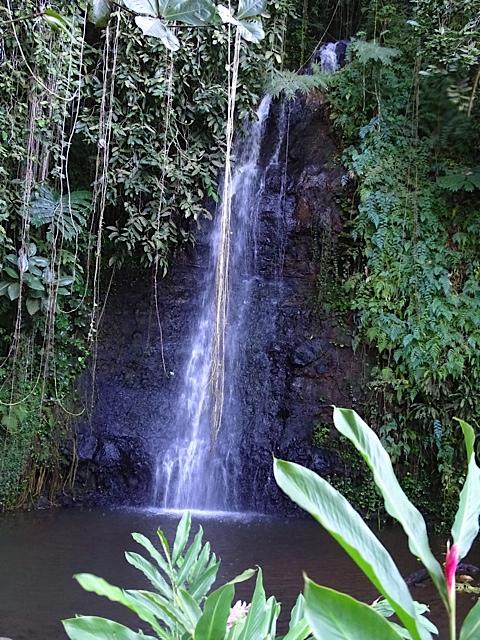Chute à Tahiti