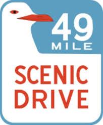 49 drive