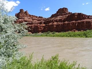 62 san juan river 2