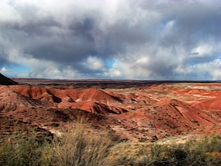 Petrified forest national park 8 1356115
